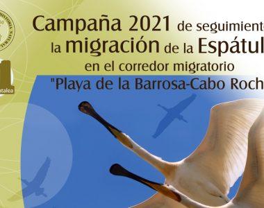 Campaña Limes Platalea 2021