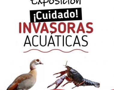 """""""¡Cuidado! Invasoras Acuáticas"""" en la Casa de los Toruños"""