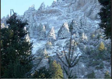 Exposición sobre el Parque Nacional Sierra de las Nieves